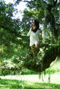Woman-in-Tree-Yoga