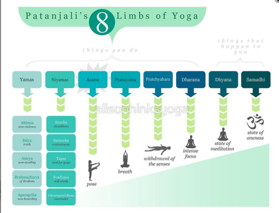 8 limbs of yoga infographic
