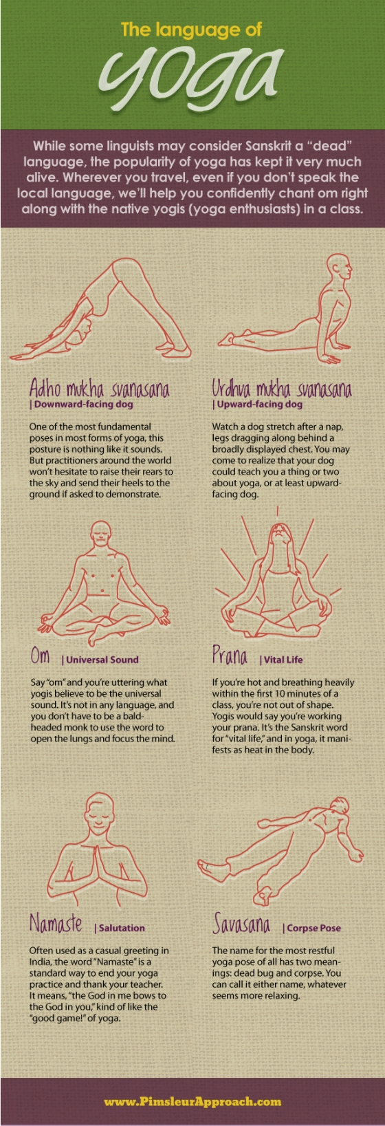 yoga posts infographic