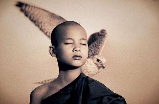 buddhist boy with bird