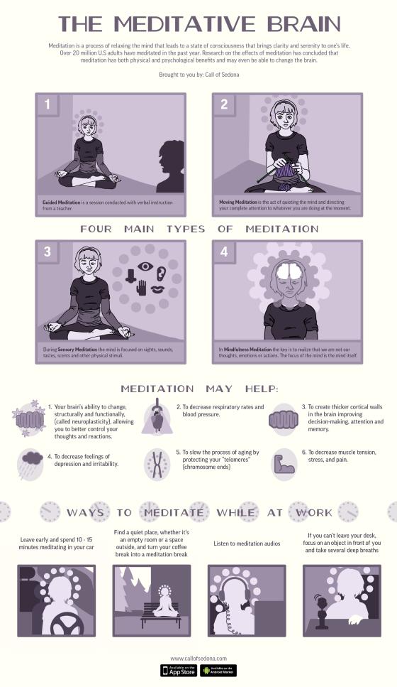 the meditative brain infographic