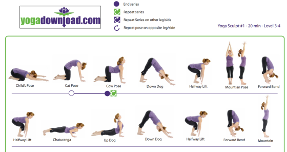 yoga sun salutation A variation